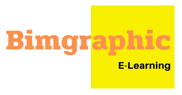 bimgraphic-5 (1)